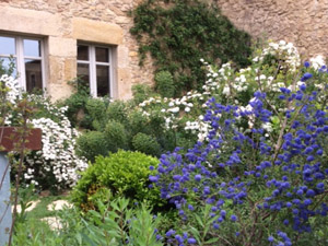 jardin baix emporda ventana