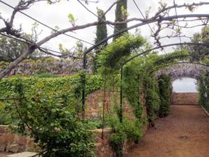 jardin extremadura pérgola