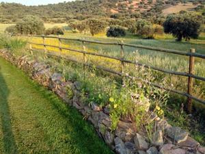 jardin extremadura muro finca