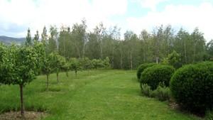 jardi puigcerda